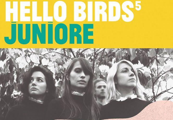 Juniore rejoint la programmation de Hello Birds!